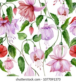 Beautiful fuchsia flowers on climbing twigs on white background. Seamless floral pattern. Watercolor painting. Hand painted illustration. Fabric, wallpaper, wrapping paper design.