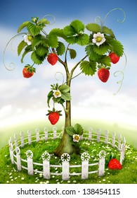 The beautiful Garden with Strawberry Tree