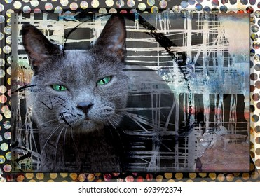 Beautiful Grey Cat With Green Eyes on a Modern Art Background