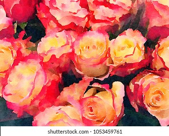 Beautiful Image of red and yellow roses in Watercolor on paper