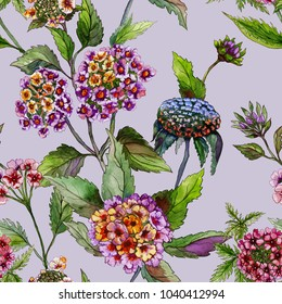 Beautiful lantana or brazil verbena flowers with green leaves on lilac background. Seamless summer floral pattern. Watercolor painting. Hand drawn illustration. Can be used as for fabric or wallpaper.