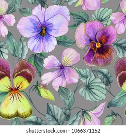 Beautiful large purple and yellow viola flowers with green leaves on gray background. Seamless botanical floral pattern. Watercolor painting. Hand painted floral illustration. Fabric, wallpaper design