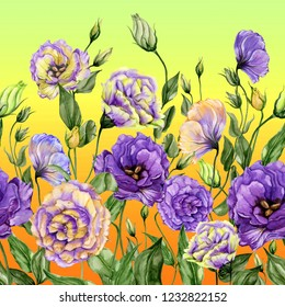 Beautiful lisianthus flowers with green leaves on gradient background. Seamless floral pattern. Watercolor painting. Hand drawn and painted illustration. Fabric, wallpaper, bed linen design.