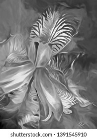 Beautiful, lush and dramatic Iris illustration that is gestural and emotive.