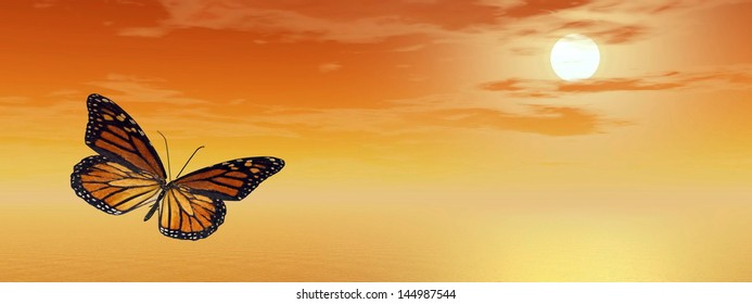 Beautiful monarch butterfly flying upon the ocean by orange sunset