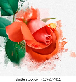 Beautiful orange rose with green leaves in the left corner of the page, with space for text with splashes of paint