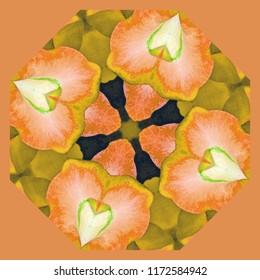 Beautiful orange,  yellow, green floral design on orange background. Decorative element, ethnic design, web design, anti-stress therapy, meditation.