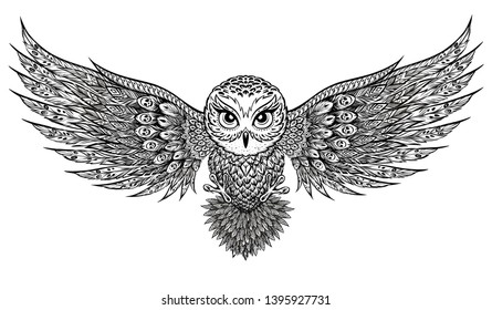 A beautiful owl hovers above the ground.