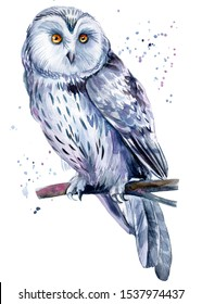 Beautiful painting with a bird, watercolor illustration, white owl and paint splashes. Poster, postcard.