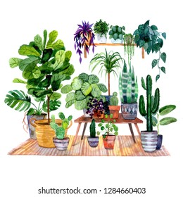 Beautiful part of interior with more house plants. Hand-drawn watercolor raster illustration with urban jungle for your trendy design.