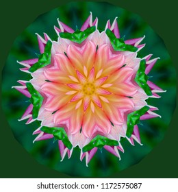 Beautiful pink, green, lavender, yellow, orange floral design on green background. Decorative element, ethnic design, web design, anti-stress therapy, meditation