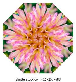 Beautiful pink, green, lavender, yellow, orange floral design on white background. Decorative element, ethnic design, web design, anti-stress therapy, meditation
