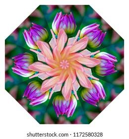 Beautiful pink, green, lavender, yellow, orange mandala with spiral floral design on white background. Decorative element, ethnic design, web design, anti-stress therapy, meditation