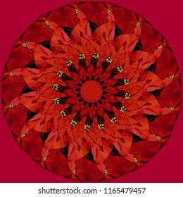 Beautiful red, gold, black mandala on red background with holiday floral pattern. Decorative element, ethnic design, web design, anti-stress therapy, meditation, kaleidoscope, holiday.