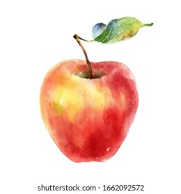 Beautiful ripe red yellow apple with leaf isolated on white background. Watercolor illustration