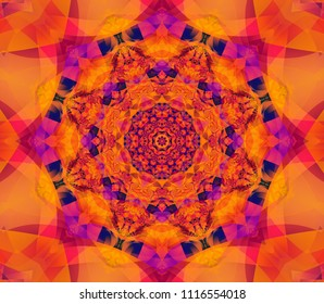 Beautiful scarlet kaleidoscope seamless illustration. Bright flower.