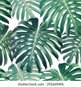 Beautiful seamless floral pattern background with tropical jungle leaves