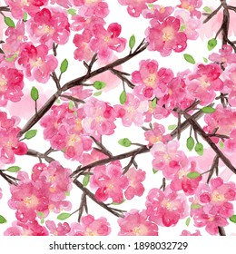 Beautiful seamless pattern with hand drawn watercolor pink sakura flowers on white background. Delicate watercolour floral texture for textile, wrapping paper, surface design, wallpaper