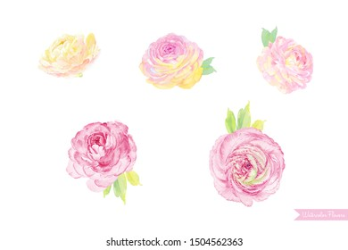 A beautiful set of watercolor flowers, elegant bouquet illustrations.
