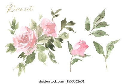 Beautiful set of watercolor roses. Floral illustration. Botanic composition for wedding or greeting card. branch of flowers - abstraction roses, romantic