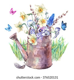 Beautiful spring bouquet with daffodils, violets, pussy-willow, pansies, muscari and butterflies in the garden iron watering can, vintage watercolor illustration