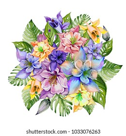 Beautiful tropical flowers (colorful aquilegia with buds and monstera leaves). Bunch of columbine flowers and exotic leaves isolated on white background. Watercolor painting. Hand drawn illustration.