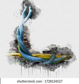 Beautiful Two Blue Yellow Couple Snake. Beautiful Digital watercolour painting of Snake. Isolated painting of Exotic Snakes. Endangered Animal Abstract Paintings Wallpaper. Portrait of Snake