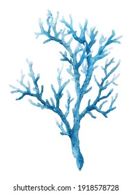 Beautiful underwater composition with watercolor sea life blue coral. Stock illustration.