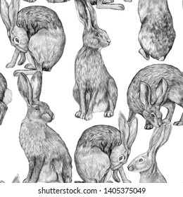Beautiful vintage seamless pattern. Pencil drawing hares in various poses. Graphic drawing of rabbits on a white background. Realistic wild animals. Wallpaper bunny.