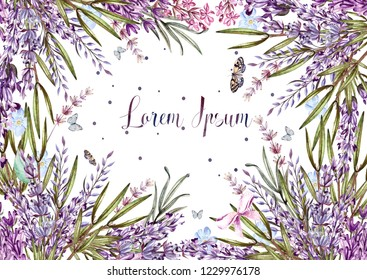 Beautiful watercolor card with lavender flowers and plants. Illustration