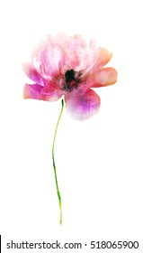 Red Watercolor Flowers Images Stock Photos Vectors