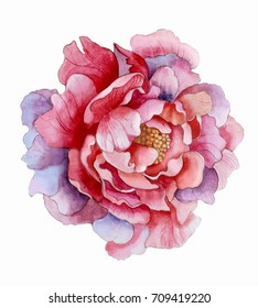 Flower painting images stock photos vectors shutterstock beautiful watercolor flower mightylinksfo