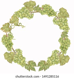 Beautiful Watercolor Hand drawn grapes wreath in green and yellow colors.
