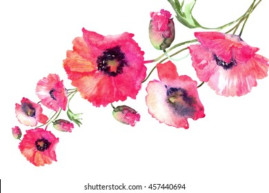 Beautiful Watercolor Red poppies flowers garland, isolated on white background.
