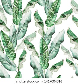 Beautiful watercolor seamless pattern with tropical leaves and banana leaves. Illustration
