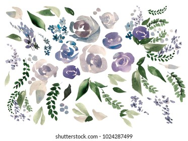 Beautiful watercolor set with rose, peony flowers and leaves. Illustration