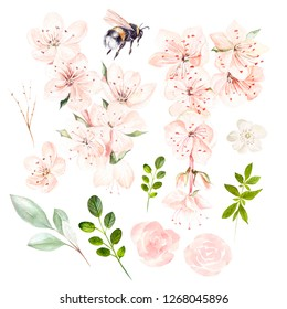 Beautiful watercolor set with spring flowers and leaves. Illustration