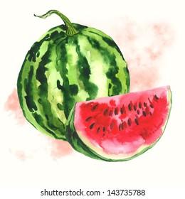 Beautiful watercolor watermelon