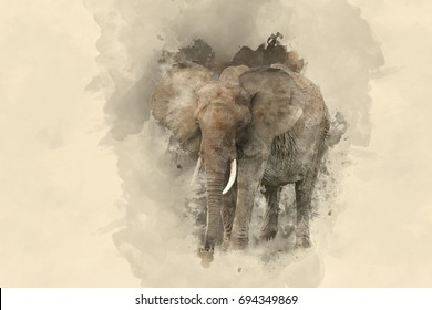 Beautiful watercolour painting of African Elephant Loxodonta Africana