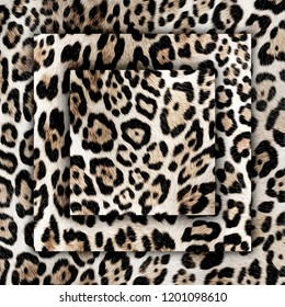 Beautiful wild leopard pattern square illustration of frame with leopard skin. Leopard background. Panther fashion shawl.