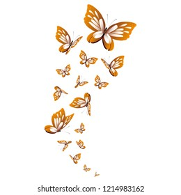 beautiful yellow butterflies, isolated on a white