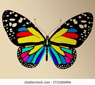 Beauty butterfly. 3d rendered on toned background