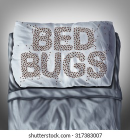 Bed bug on pillow and in bed as a bedbug infestation concept shaped as text letters as parasitic insect pests under the sheets as a hygiene health care symbol.