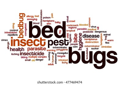 Bed bugs word cloud concept