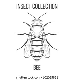 Bee insect geometric lines silhouette isolated on white background vintage design element illustration