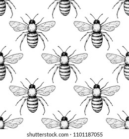 Bee seamless pattern. Hand drawn insect background. Engraved objects. Vintage drawing for honey industry, packaging design, fabric, swatch.