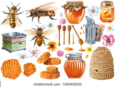 Beekeeping equipment watercolor illustration, isolated on white with working path