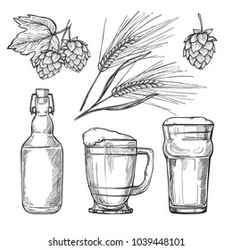 Beer hand drawn illustration. Ear of barley, hop, beer glass and bottle sketches isolated on white background. Oktoberfest festival. Craft beer. Vintage icons for bar, pub, restaurant menu