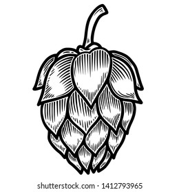 Beer hop in engraving style isolated on white background. Design element for logo, label, sign, poster, flyer.