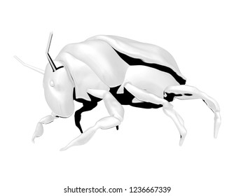 3d beetle images stock photos vectors shutterstock Flea Beetle beetle ordinary character coloring black and white image 3d rendering